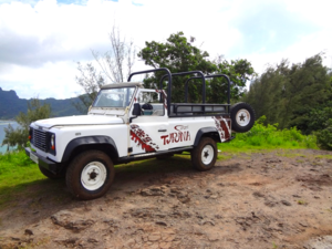 Bora Bora Off Road Adventure from Jessica - DTP (112)