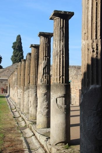 Columns Along the Forum